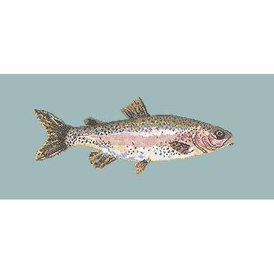 Rainbow Trout Needlepoint Kit Kits Elizabeth Bradley Design Pale Blue