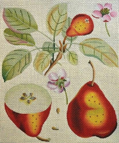 Red Pear Botanical Painted Canvas Melissa Shirley Designs