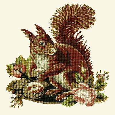 Squirrel Needlepoint Kit Kits Elizabeth Bradley Design Winter White