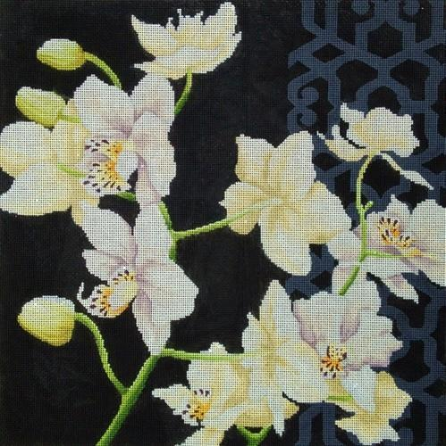 White Orchid on Black Painted Canvas Kirk & Bradley