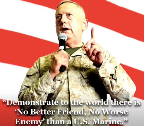 General Mattis Quotes Enchanting 48 Best General James Mad Dog Mattis Quotes