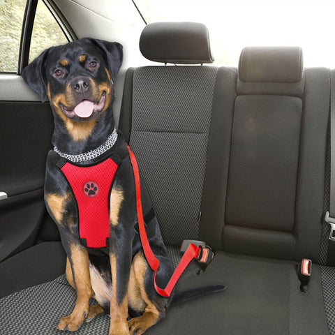 Dog Harness & Matching Safety Seat Belt Set for Vehicle. 4 Colours Available Black/Green/Red/Blue. Sizes S, M, L. Note suitable for Medium-Large Sized Dogs.