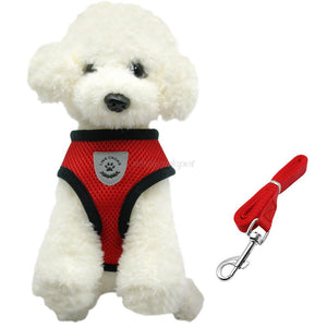 Small Dog Harness & Lead Set. Cosy, Comfy, Soft, Breathable Mesh.