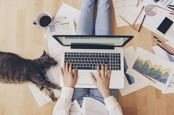 6 Tips to Productively Work From Home