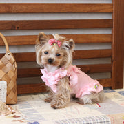 Floral Border Lace Dog Dress - Diddo Furry Tails Pet Store