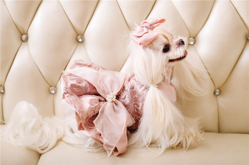 High-end Luxury Emboridery Bow Tie Wedding Princess Banquet Dog Dress - Diddo Furry Tails Pet Store