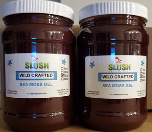 Wildcrafted Raw Sea Moss Gel - Infusions **Next Level**