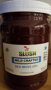 St. Lucia ~ GOLD ~ Wildcrafted Raw Sea Moss Gel - Infusions **Next Level**
