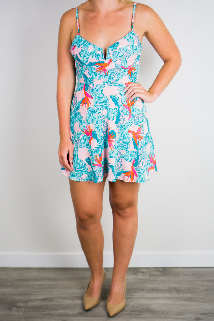 Buddy Love Cate Skater Dress
