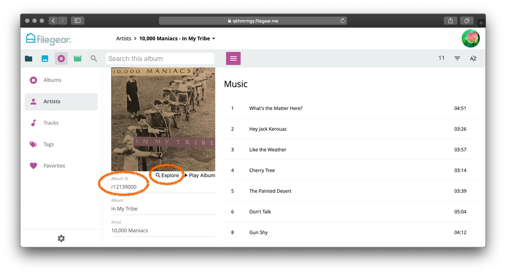 Improved Music Album View
