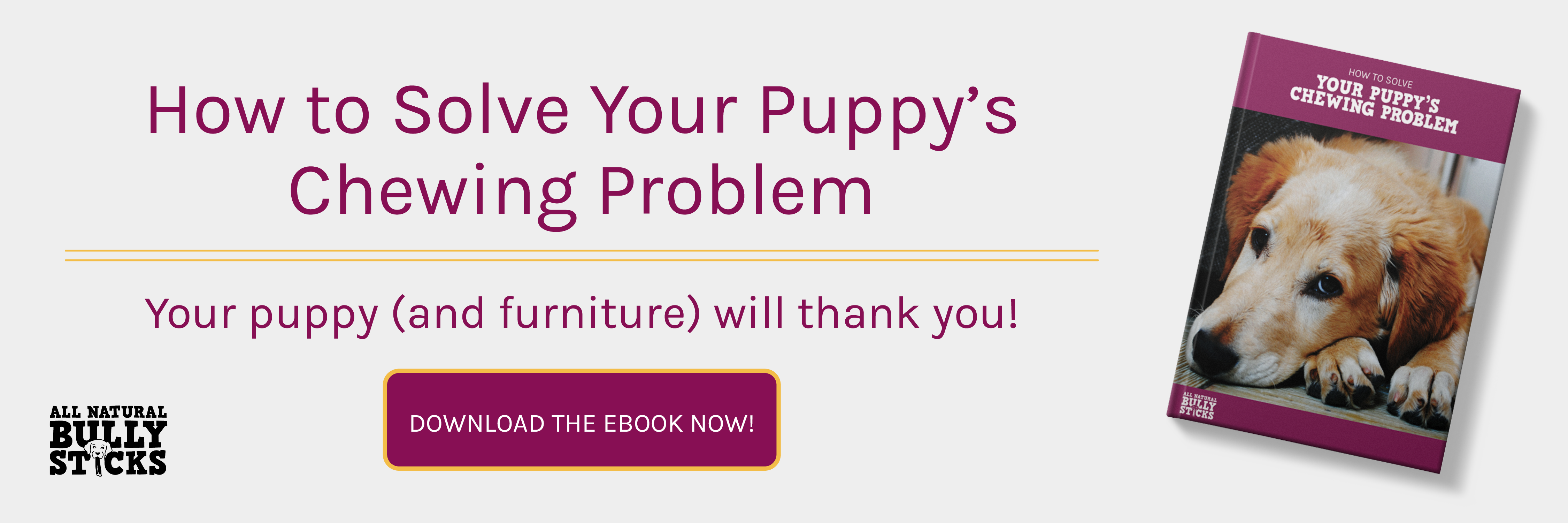 How to solve your puppy's chewing problem?