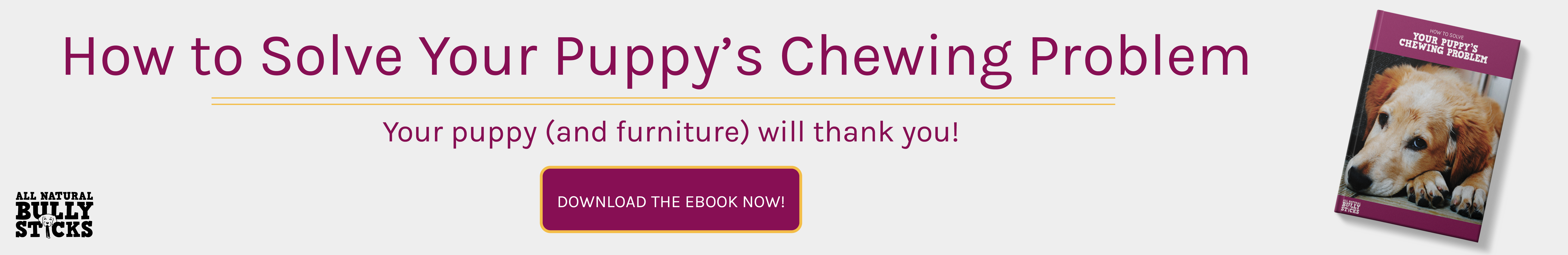 How to solve your puppy's chewing problem? Ebook