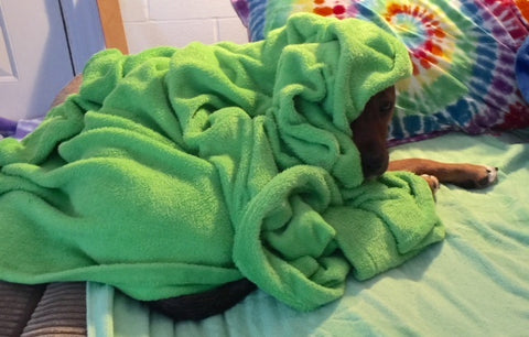 Clooney wrapped in green blanket