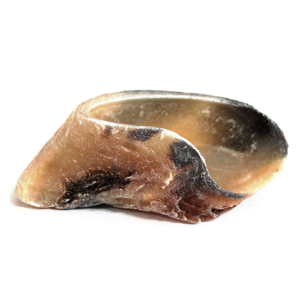 Cow Hooves $0.80/piece