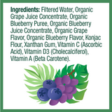Zellee Organic Fruit Jel, Blueberry Grape - 12 pack