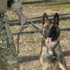 Image of Quick Release Heavy Duty Military Dog Leash