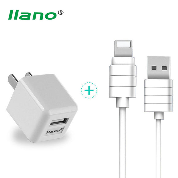 iOS Lightning Cable & Wall Charger