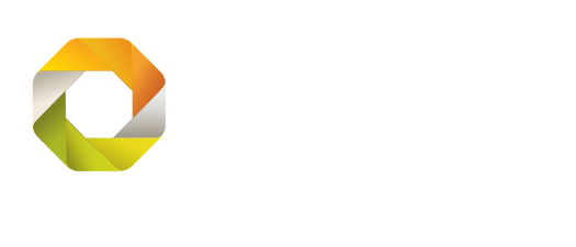 Disability Services Consulting