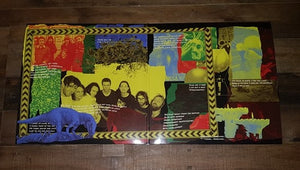 King Gizzard & The Lizard Wizard - Polygondwanaland Deluxe 2LP Box Set