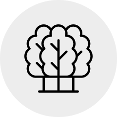 icon of 3 trees