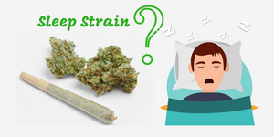 Strain Review: Best Cannabis Strains For Sleep