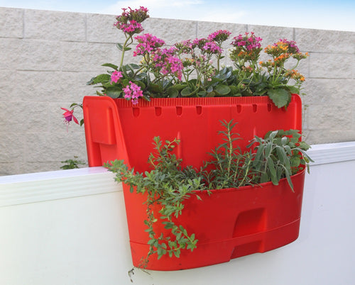 Kamelia Saddle Planter - Red