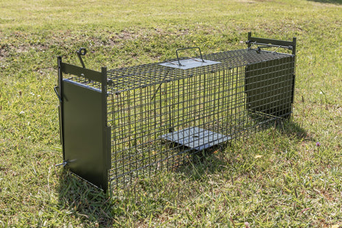 Medium Cage Trap - rats, ferrets, stoats and possums