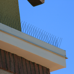 Premium Stainless Steel Bird Repelling Spikes - 15.25 lineal metres 230mm wide