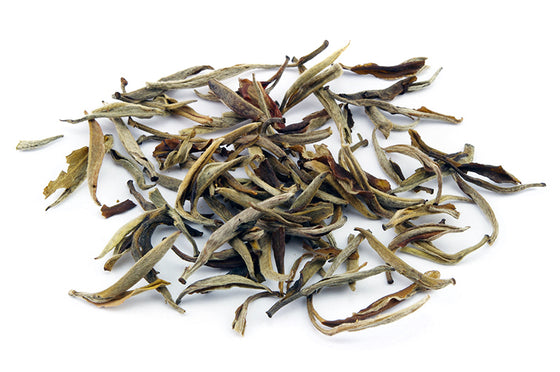 Bai Hao Yin Zhen, Thé blanc de bourgeons, White Tea with tips