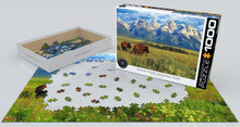 Grand Teton National Park - Hobby Sense