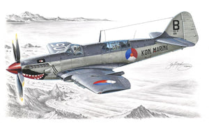 "1/48 Fairey Firefly Mk.4/5/6 ""Foreign Service"", Canadian Markings"
