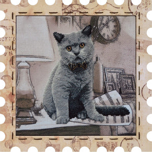 Cat Kapellmeister cross stitch kit
