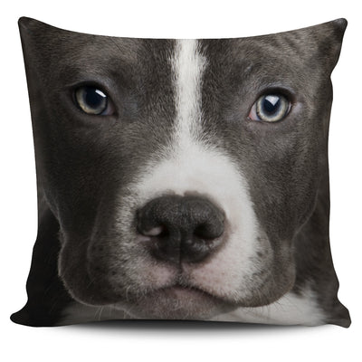POSEIDON - AMERICAN PIT BULL BIG FACE PILLOW COVERS 0604