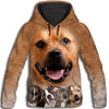 American Staffordshire Terrier Awesome All Over Print Hoodie