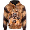 Bloodhound Face All Over Print Full Zip Hoodie ZEUS020102