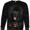 Newfoundland Aweesome All Over Print Crewneck Sweatshirt HEMERA211201