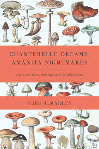 Chanterelle Dreams, Amanita Nightmares - HeyMoon