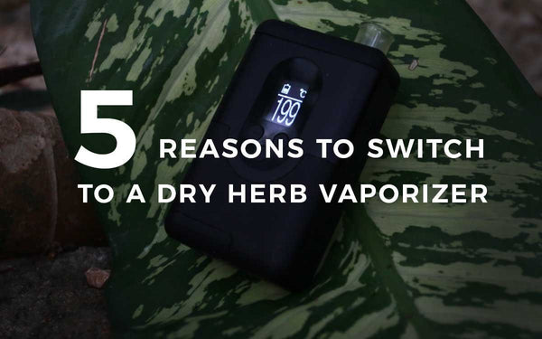 5 reasons to Switch to a Dry Herb Vaporizer