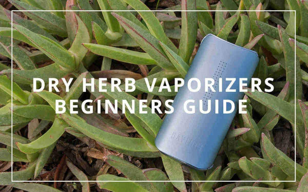 Beginners Guide to Dry Herb Vaporizers