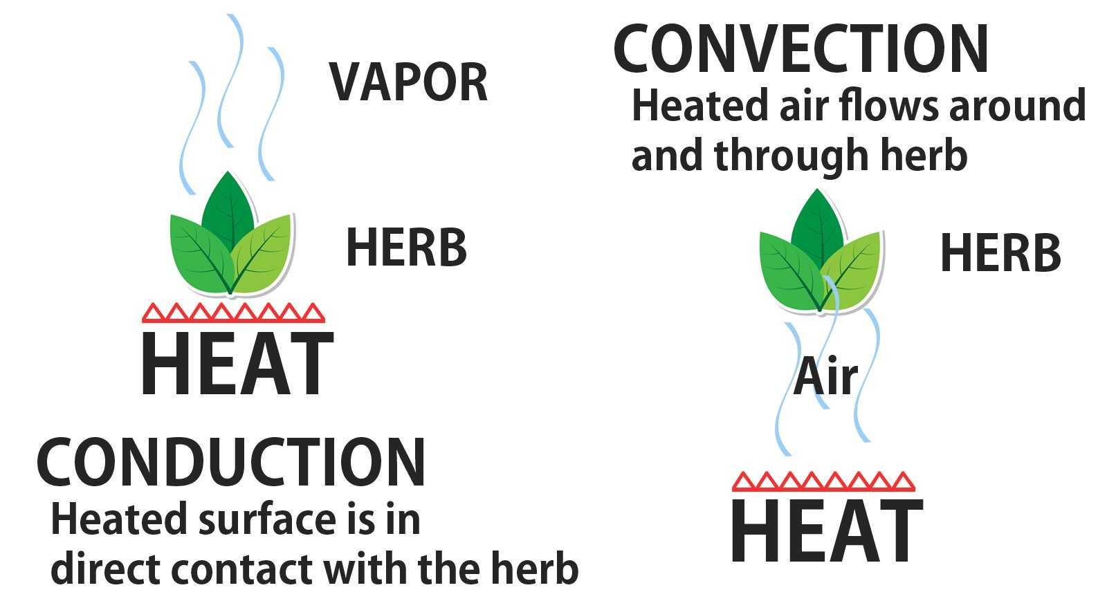 Concudtion vs Convection Beginners Guide to Dry Herb Vaporizers