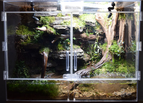 Medium Naturalistic Enclosure Starter Kit - Deluxe