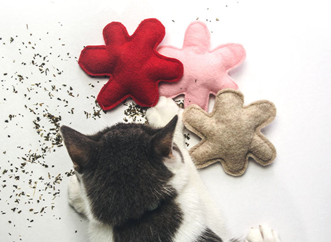 Cat Butt Catnip Toy
