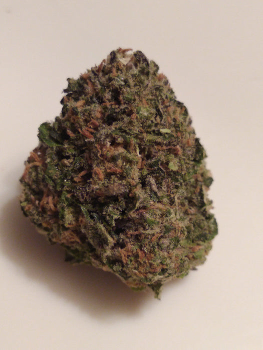 Blue City Diesel – Hybrid AAAA