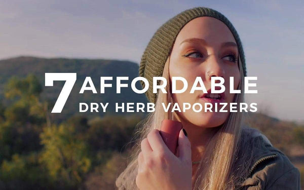 7 Affordable Dry Herb Vaporizers