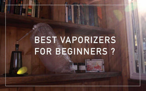 Which are the best vaporizers for beginners?