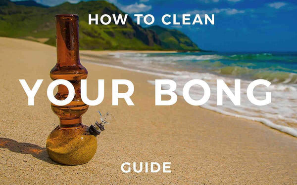 How to Clean a Bong? Your Guide