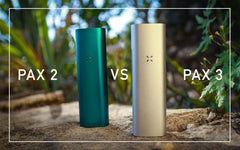 The Ultimate PAX Vaporizer Guide Pax 2 vs Pax 3