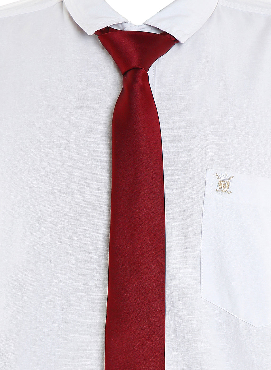 Zido Tie for Men TPLS056