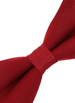 Zido Bow Tie for Men B2L076