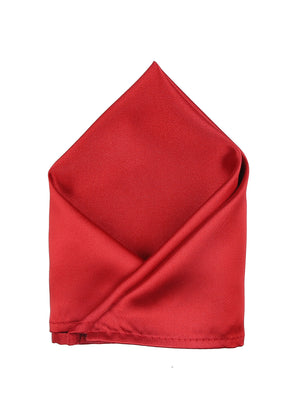 Zido Pocket Square for Men PSQ198